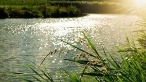 Florida river restoration project marks 22-year milestone