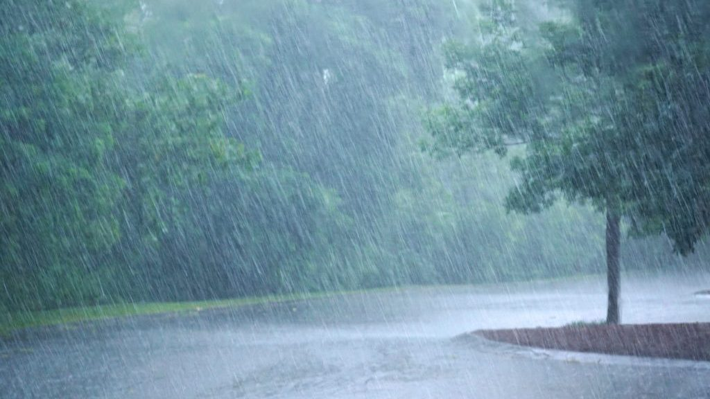 Peel Region taking action against severe weather
