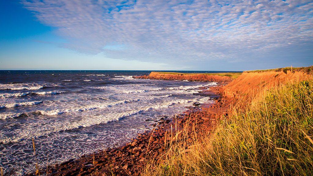 Anne's Land (aka Prince Edward Island) is approaching 2020 in great shape
