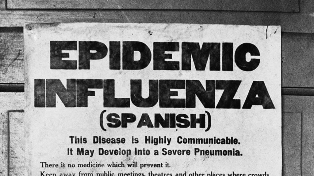 Canada's response to Spanish Flu drove health care reforms