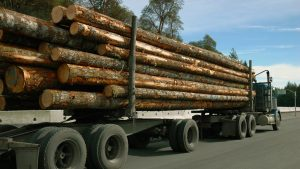 Despite reduction, Canada calls U.S. softwood lumber duties 'unfair,' 'unjustified'