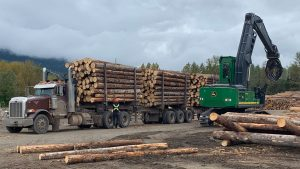 Panel outlines mass timber opportunities in Canada
