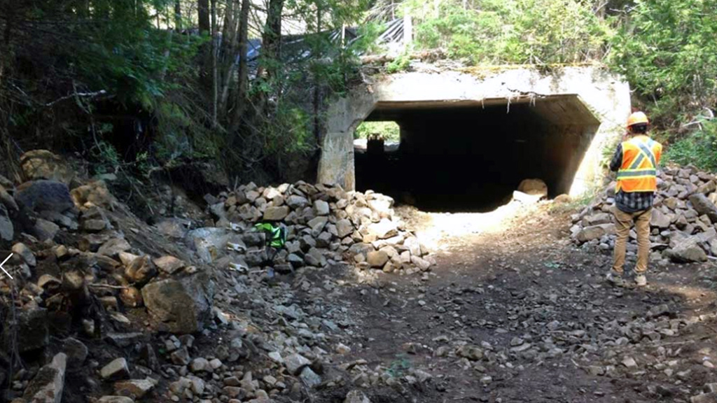 Shamrock Lake concrete culvert gets new life thanks to innovative solution