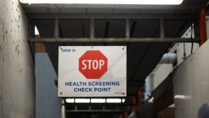 EllisDon moves to mandatory tests as Crosslinx adopts rapid antigen test program
