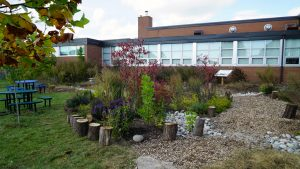 Rain gardens provide important lessons for students, contractors