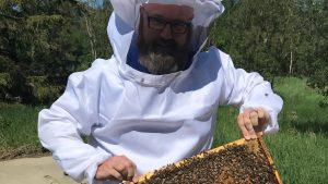 Lafarge: honey bees hard at work reclaiming aggregate sites