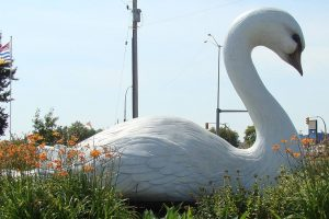 Swan River partnership takes flight for Main Street project